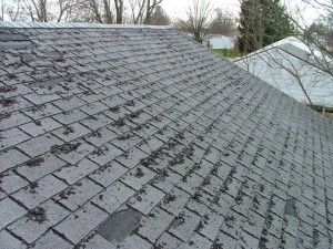 how to fix curled up roof shingles