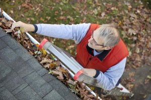 Would You Like to Stop Cleaning Your Gutters
