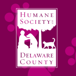Muth Roofing raises funds for Humane Society of Delaware County