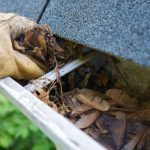 3 Nasty Reasons to Keep Your Gutters Clean