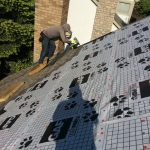 Watch Out For These Roof Shingle Issues