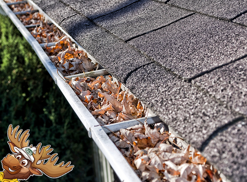 Clogged Gutter Repairs Muth Moose